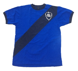 レトロTシャツⅣ